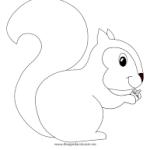 scoiattolo - Copia